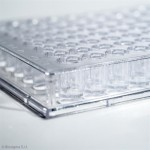 96-well microtiter plates in polystyrene